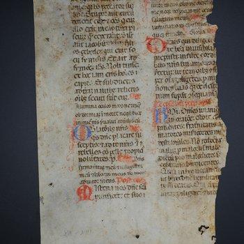 Folio from a Manuscript 3