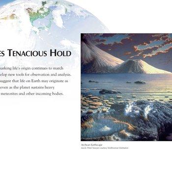 Panel 12: Life Takes Tenacious Hold