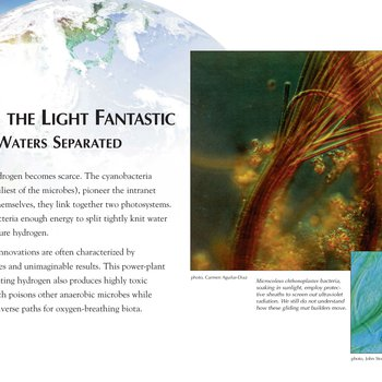 Panel 15: Tripping The Light Fantastic: And The Waters Separated